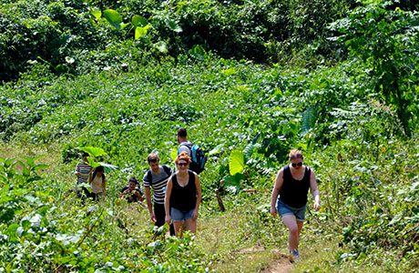 Full day trekking in Ba Be National Park