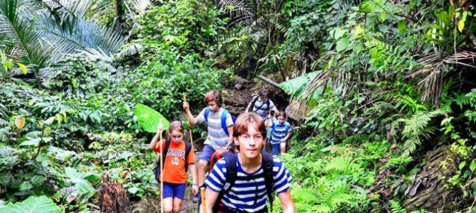 Full day trekking in Ba Be National Park
